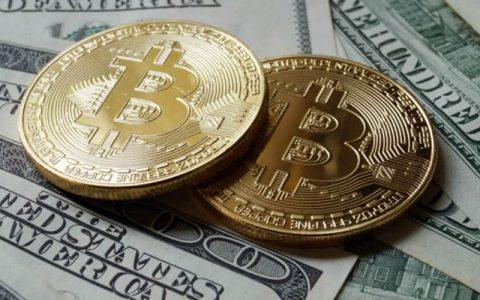 调查显示:2019年加密货币投资占美国投资总额的5%