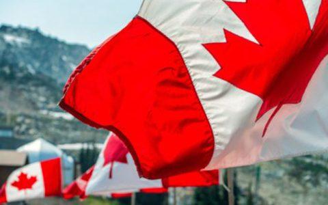 加拿大政府机构建立以太坊区块链浏览器