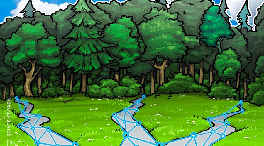 西班牙开发区块链技术应用为林业提供透明度