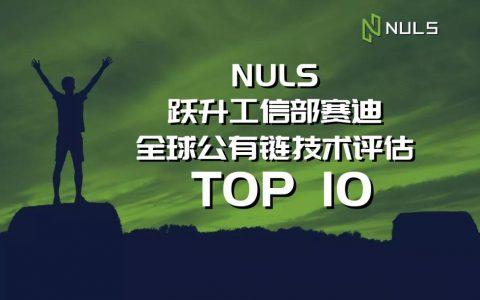 NULS大爆发|跃升赛迪全球公有链技术评估前十名