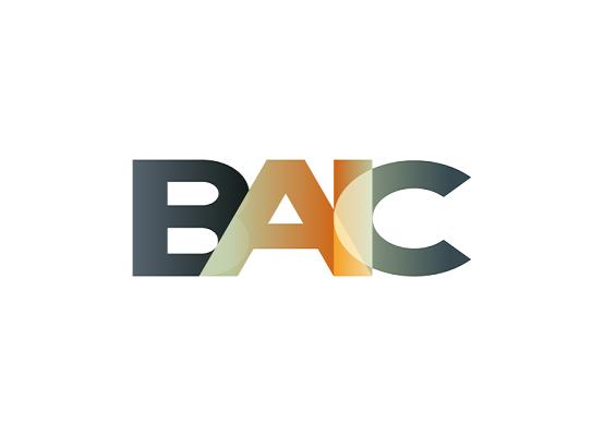 BAIC最新突破进展:正式开源轻节点钱包!