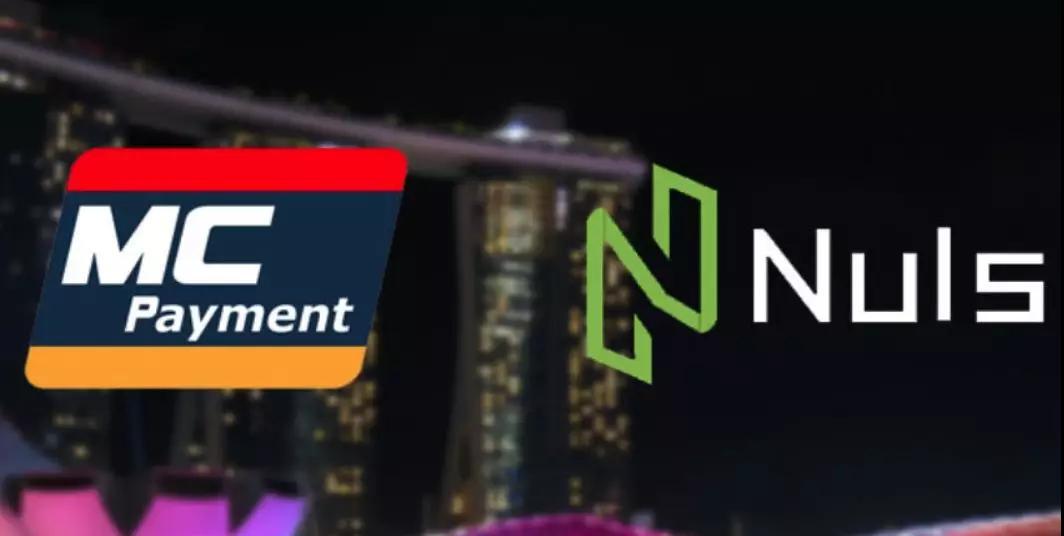 NULS生态又添一员猛将:稳定币的大创新 - 稳定的实用型 Token—— Euforia支付系统