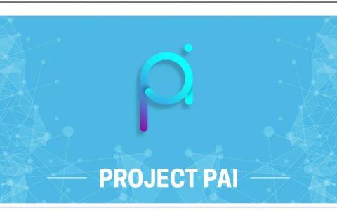 Project PAI正式入驻Binance Info平台