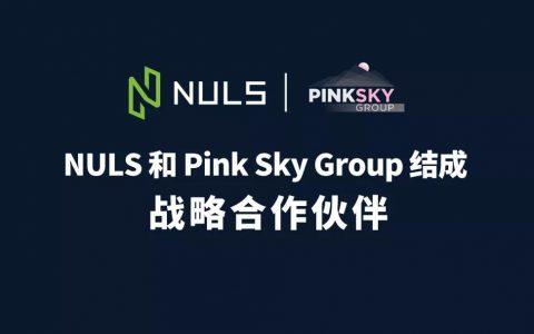 聚变∣NULS和Pink Sky Group结成战略合作伙伴