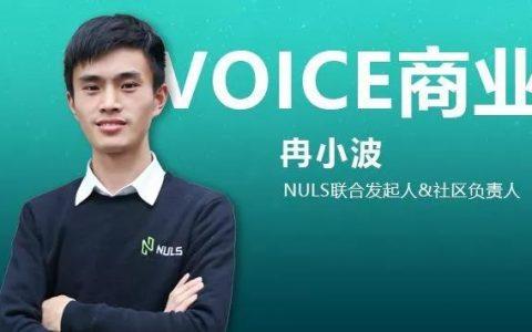 VOICE商业丨对话NULS冉小波:区块链应该更简单