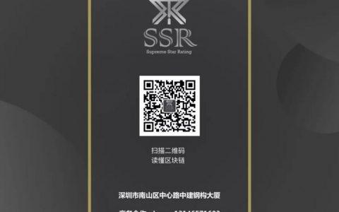 PAI:个性化人工智能经济网络 | SSR评级