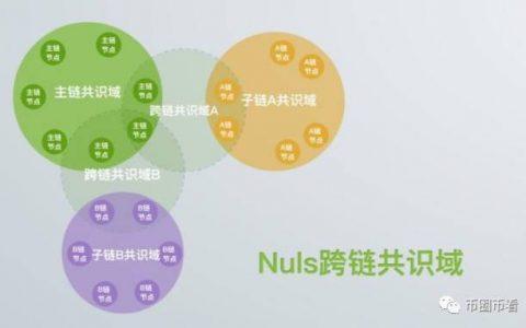 Nuls:价值被低估的底层公有链
