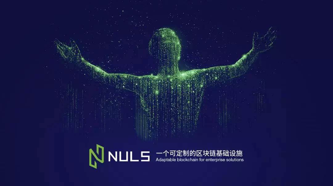 NULS大使竞选|1650万票 开启NULS社区自治新纪元