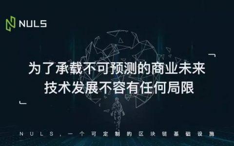NULS项目技术及理念特性-多链并行