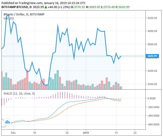 分析:2019年比特币将积蓄力量,并在年底回暖