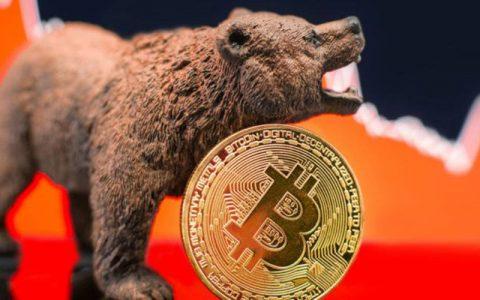 为什么加密货币进入了历史上最长的熊市?