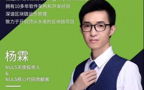 NULS 核心开发者杨霖|团队很努力,社区很给力,一切尽在掌握中!