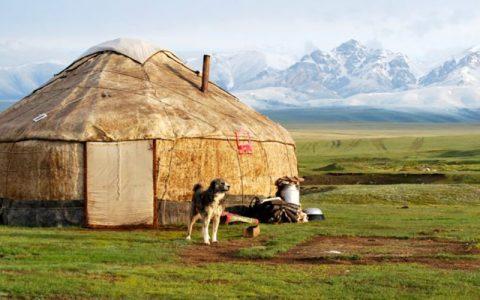 UNICEF探索区块链以便使吉尔吉斯斯坦所有学校接入互联网