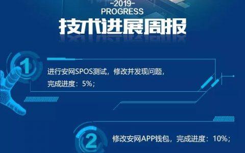 安网(SAFE)项目进展(第49期)