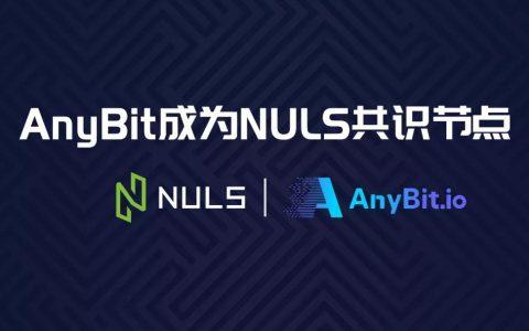 共建NULS生态∣AnyBit加入POC共识并已启动节点矿池