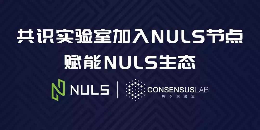 NULS生态新增手握「上亿美元」资本,优质资源赋能NULS生态