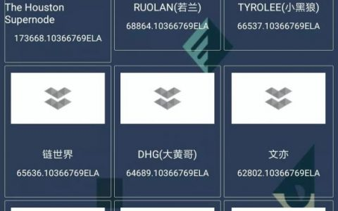 亦来云DPoS竞选The Houston Supernode、RUOLAN、TYROLEE暂时占据前三
