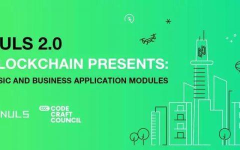 美国开发者研讨会|近30位开发者深度体验NULS ChainBox造链
