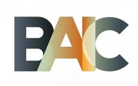 BAIC项进度周报(20190804-20190818)