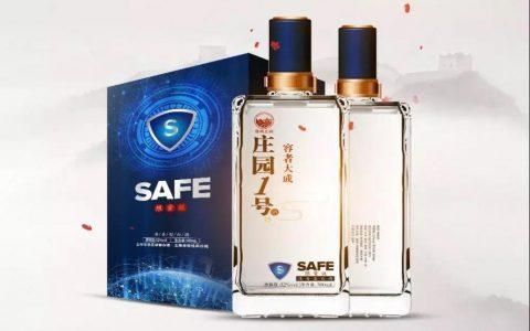 安网(SAFE)项目进展(第62期)