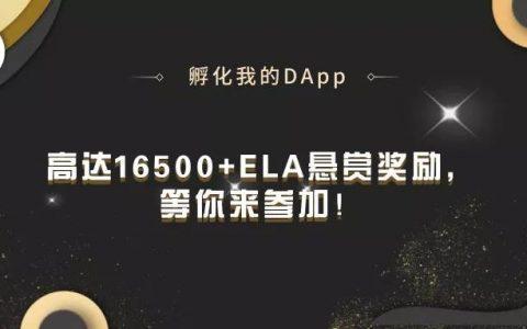 """""""孵化我的DApp""""大象社区开发者大赛第一轮结果公布"""