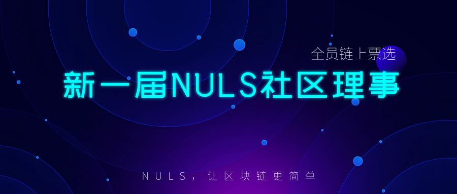 新一届NULS理事会正式完成组建 NULS项目12月下半月进度简报