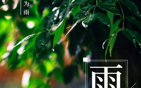CR先锋资讯日历 ▏今日雨水:向光而行,共待花开