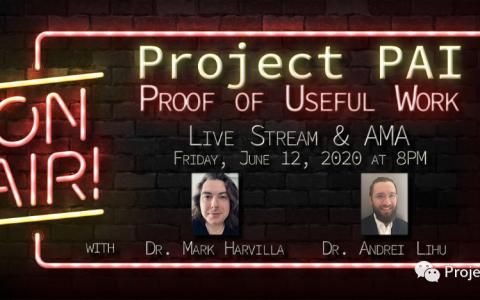 Project PAI 项目进度- 2020年5月25日