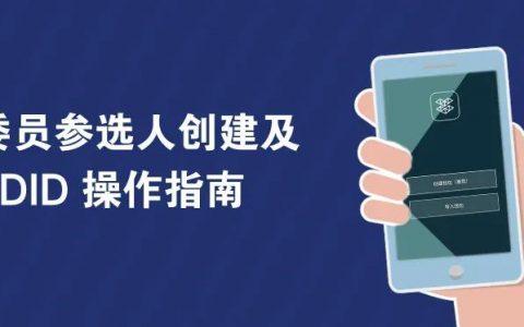 CR 委员竞选钱包投票操作指南