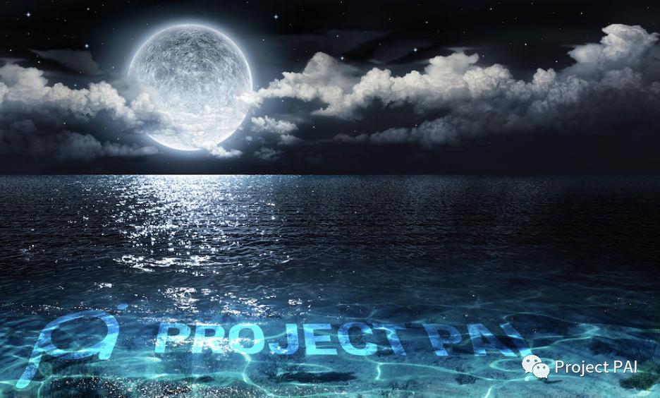 Project PAI 项目进度- 2020年6月22日