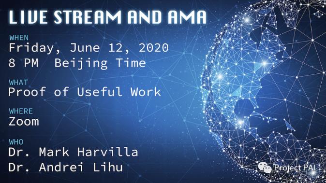 Project PAI项目进度-2020年6月1日