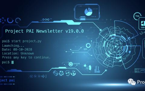 Project PAI 项目进度- 2020年8月10日