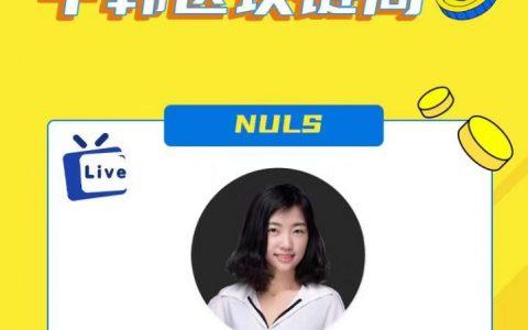 """""""中韩区块链周""""NULS联合发起人:跨链生态赋能DeFi发展"""