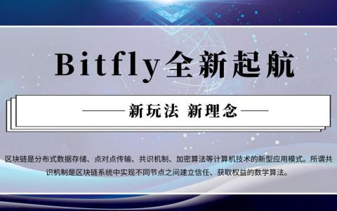 新玩法 新理念 Bitfly全新起航全面开启注册打新