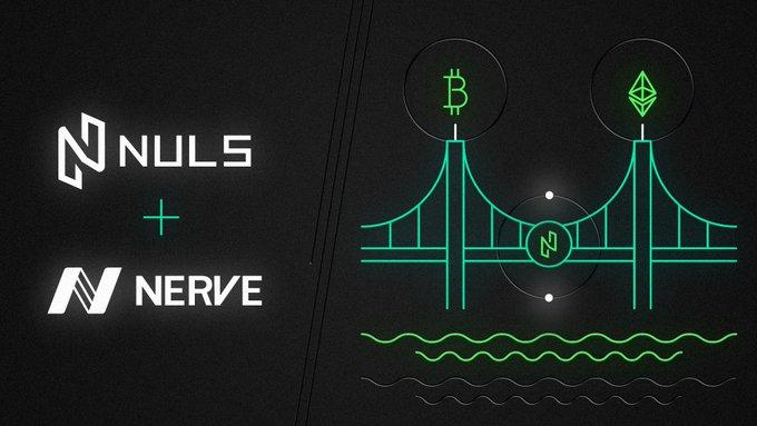 DeFi黑马:跨链多资产NerveDEX重磅上线