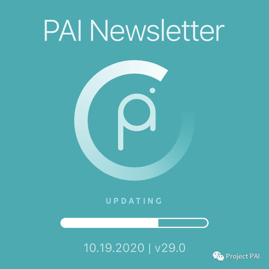 Project PAI 项目进度- 2020年10月19日