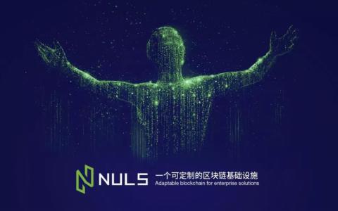 NULS社区2020年第四季度大使竞选结果公布