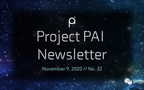 Project PAI 项目进度- 2020年11月9日
