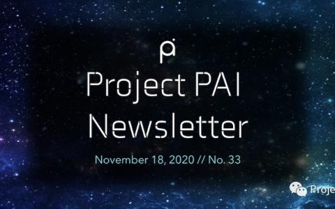 Project PAI 项目进度- 2020年11月18日