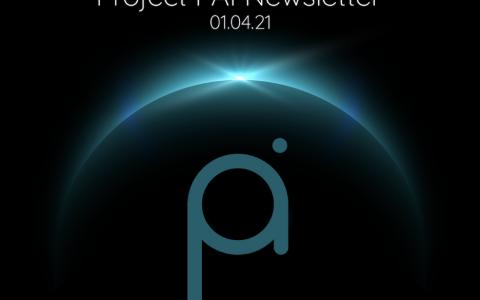 Project PAI 项目进度- 2021年1月4日