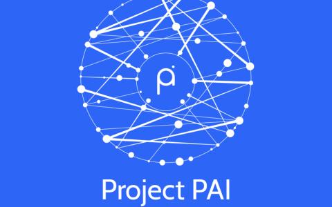 Project PAI 项目进度- 2021年3月8日