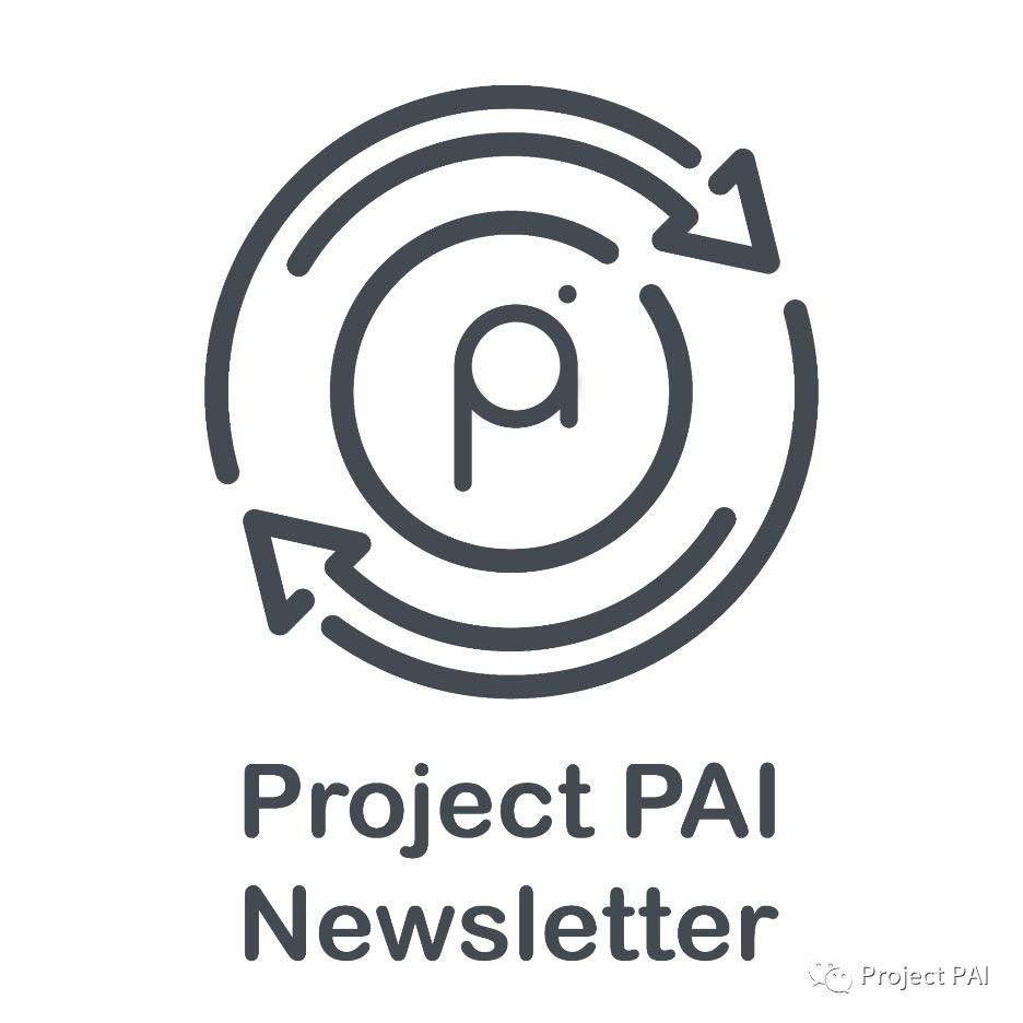 Project PAI 项目进度- 2021年4月19日