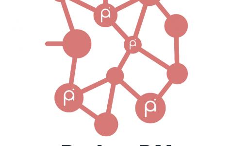 Project PAI 项目进度2021年4月一报