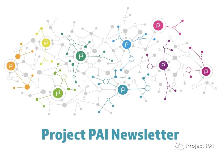 Project PAI项目进度-2021年4月12日