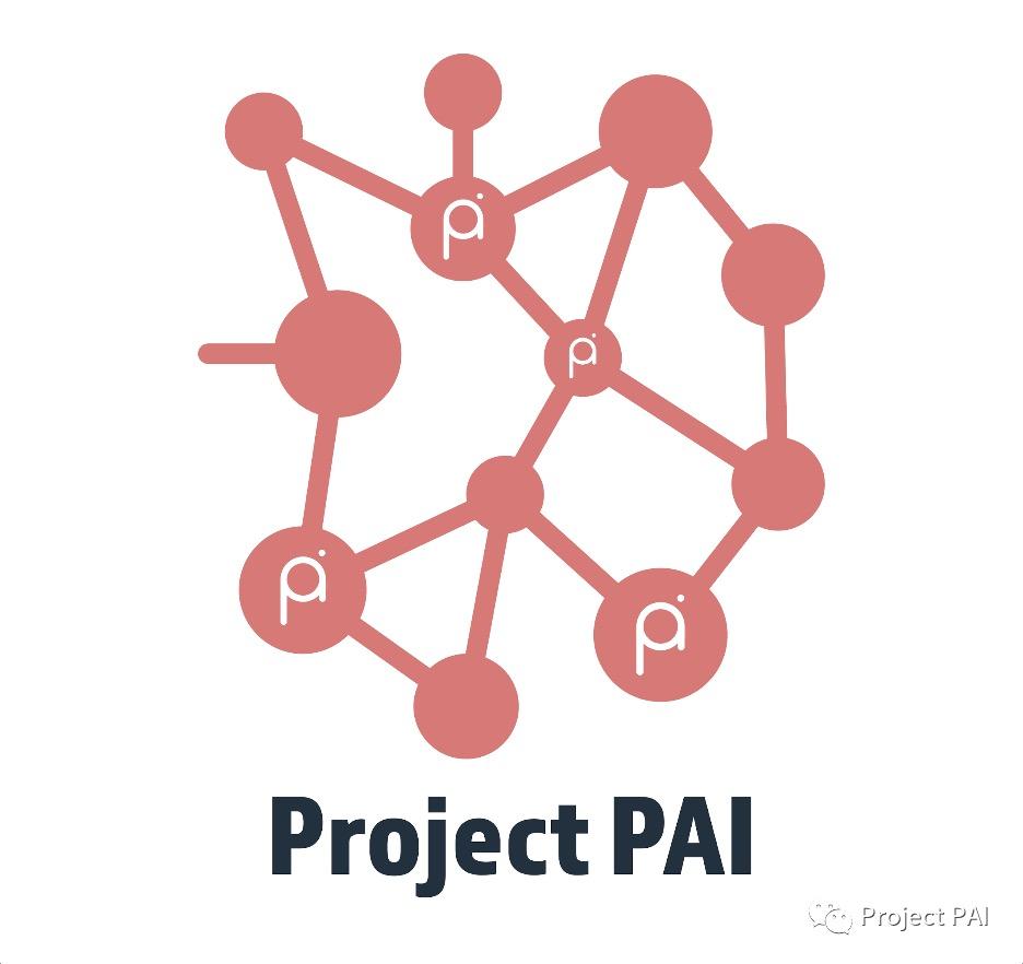 Project PAI 项目进度- 2021年4月5日