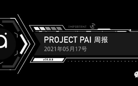 Project PAI 项目进度- 2021年5月17日