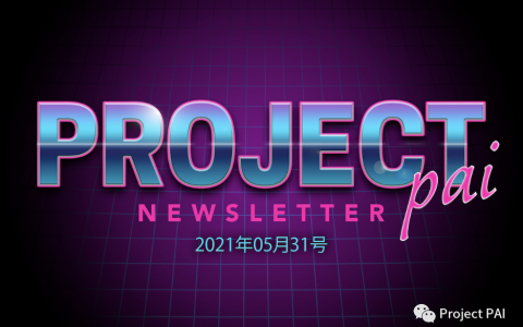 Project PAI 项目进度-2021年5月31日