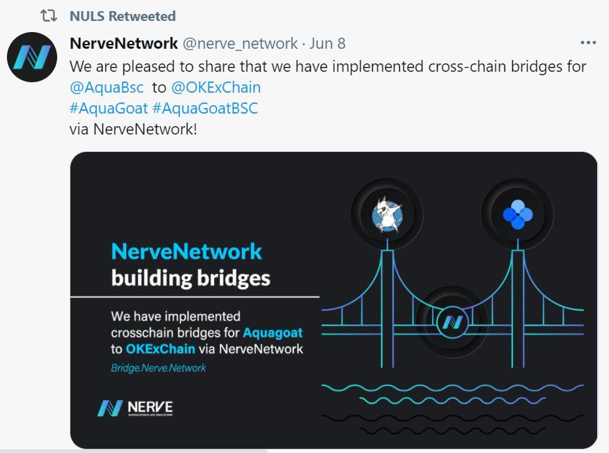 NULS社区2021年6月上半月简报  NULS生态跨链桥NerveBridge  DApp为万链互联助力