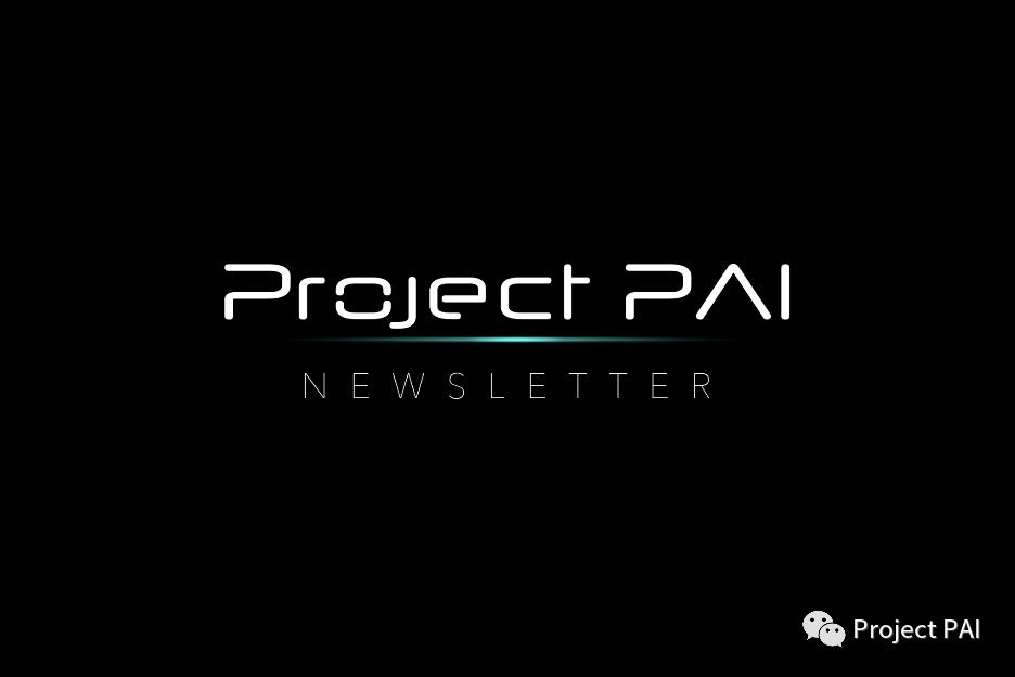 Project PAI 项目进度- 2021年6月28日