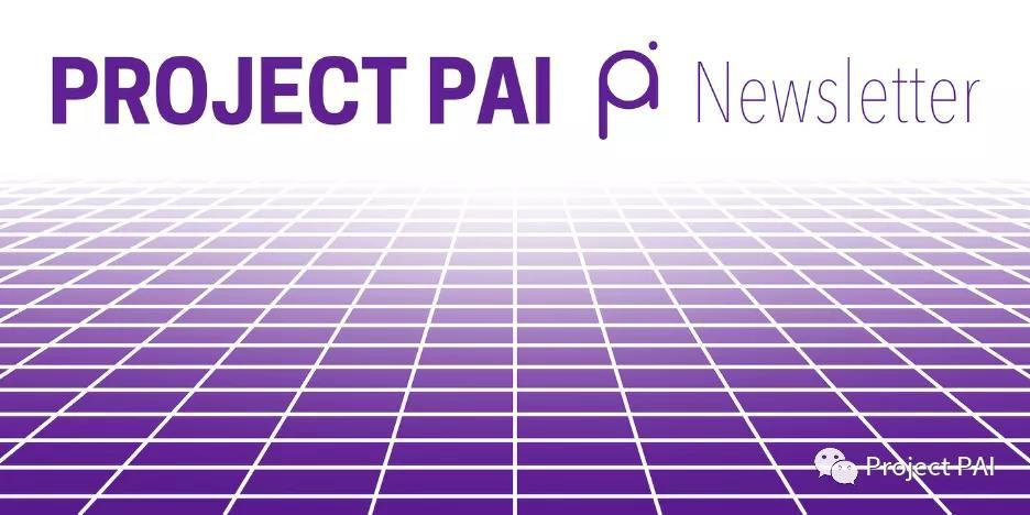 Project PAI 项目进度- 2021年8月30日